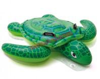 Żółw do pływania